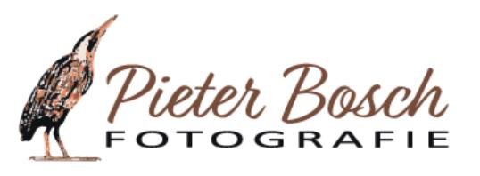 Lezing natuur- vogelfotograaf Pieter Bosch